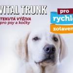 VITAL_TRUNK-pes 2